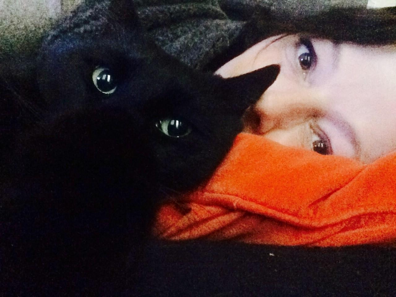 La communication d'âme à âme avec son chat