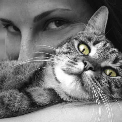 comment-votre-chat-peut-ameliorer-votre-vie